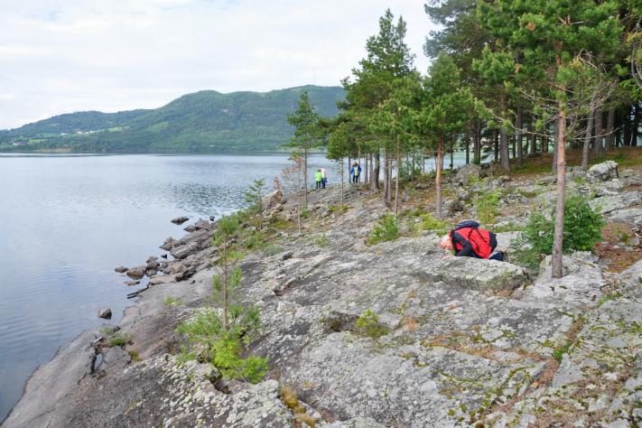 Gamle bergarter for unge geologer