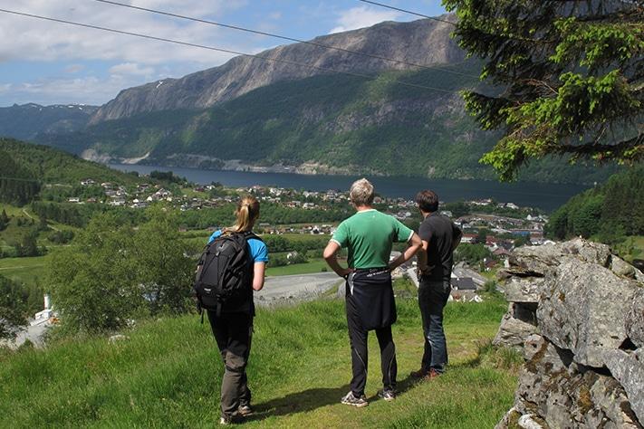 711x474_Nordfjord-Sogn Skjærsone Alternativ