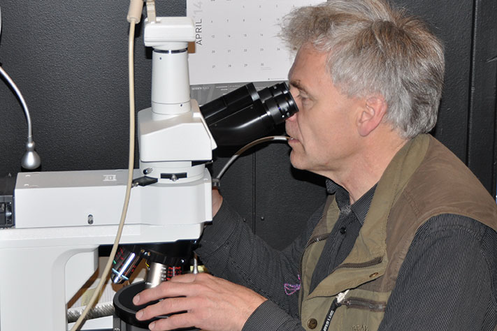 711x474_Sven-Dahlgren-ved-mikroskopet