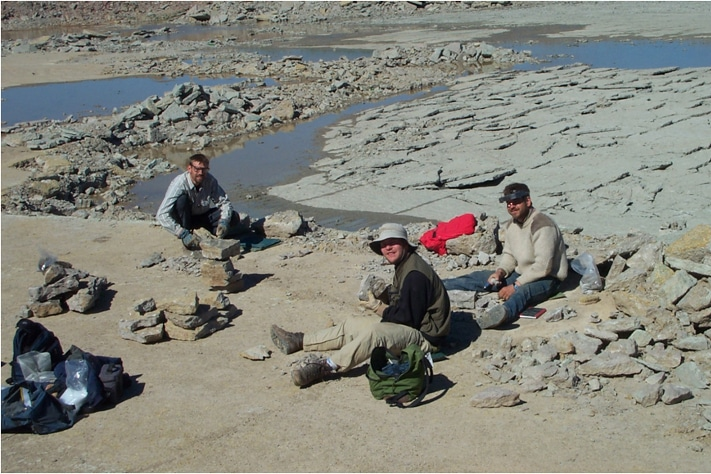 Diversity's Big Bang: The great ordovician biodiversification event