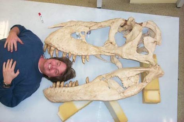 Kritt 146 – 66 millioner år