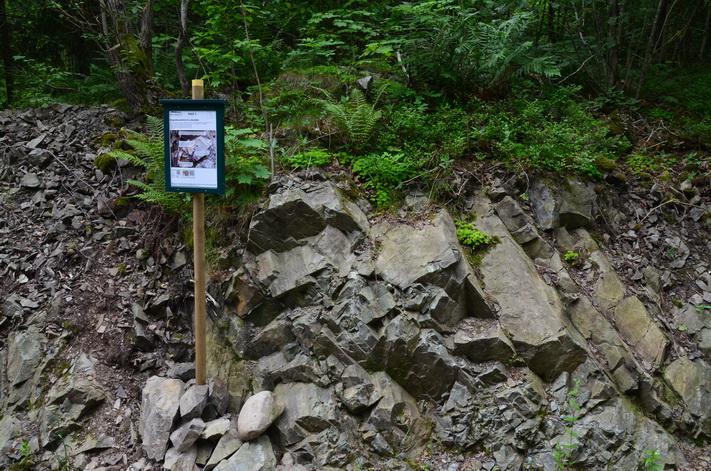 Sju km med geologi