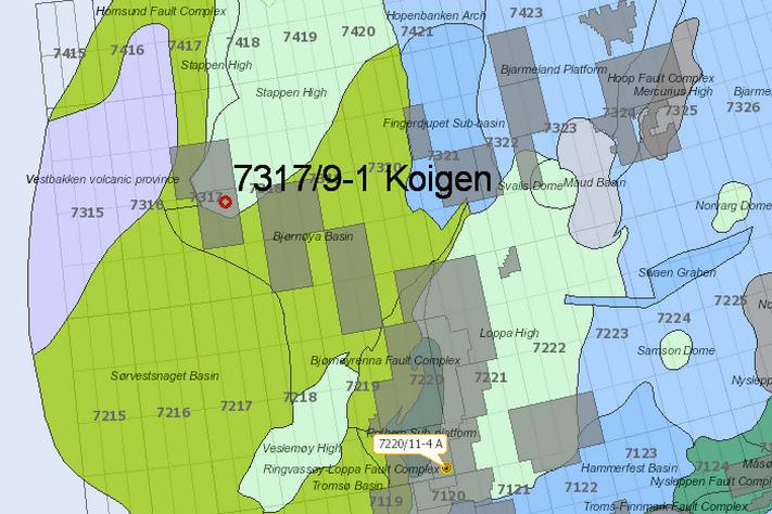 Boretillatelse for Koigen Central