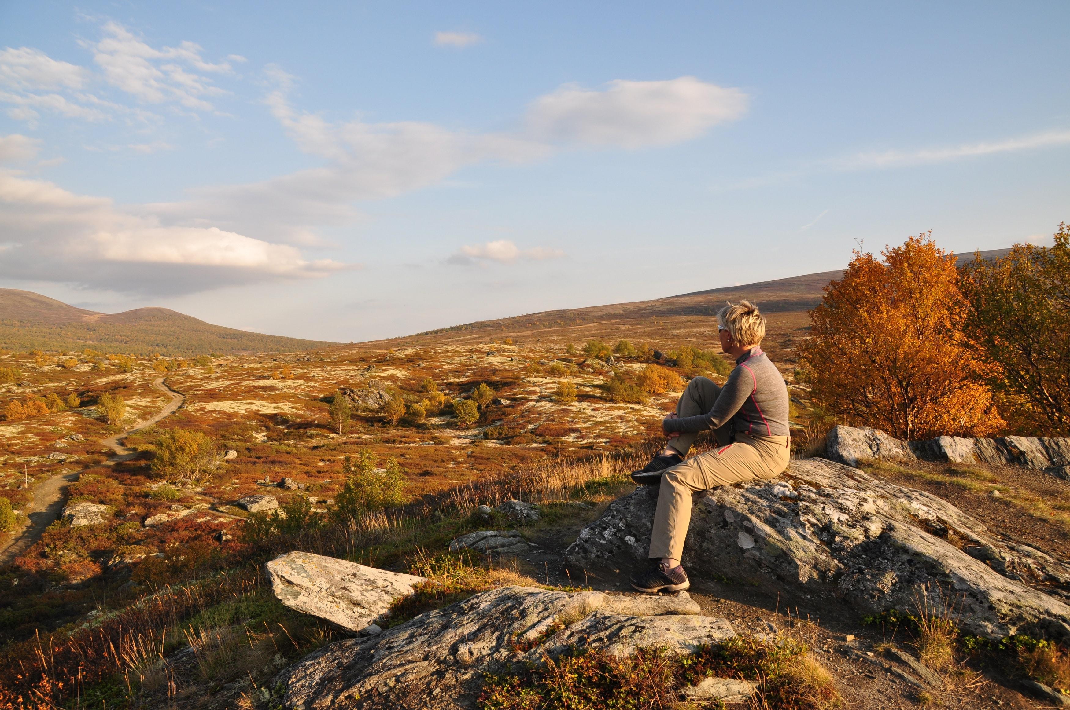 Bunnmorene: Vår mest utbredte jordart