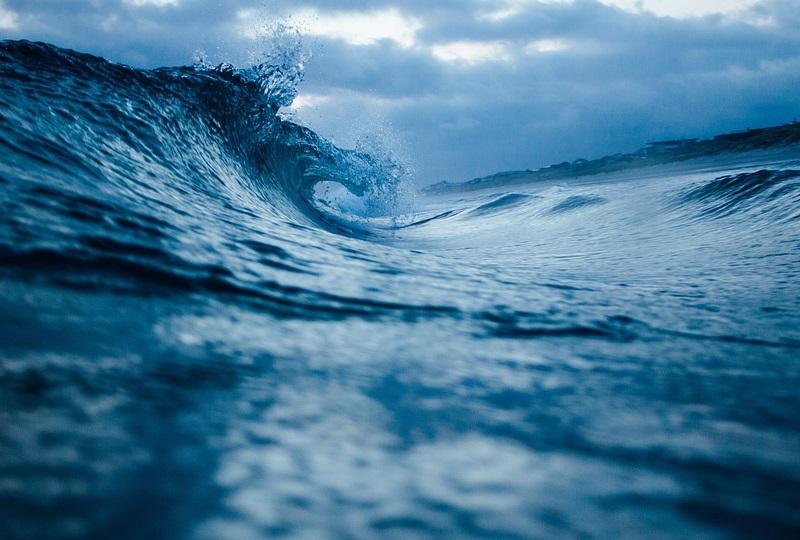96 prosent finnes i havet