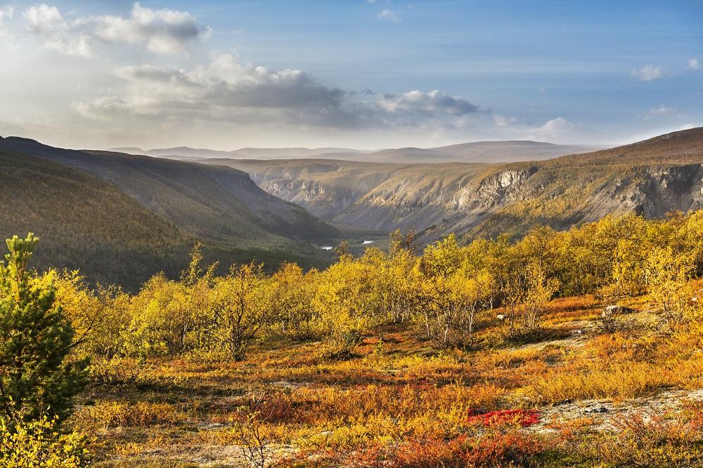 Reisa nasjonalpark