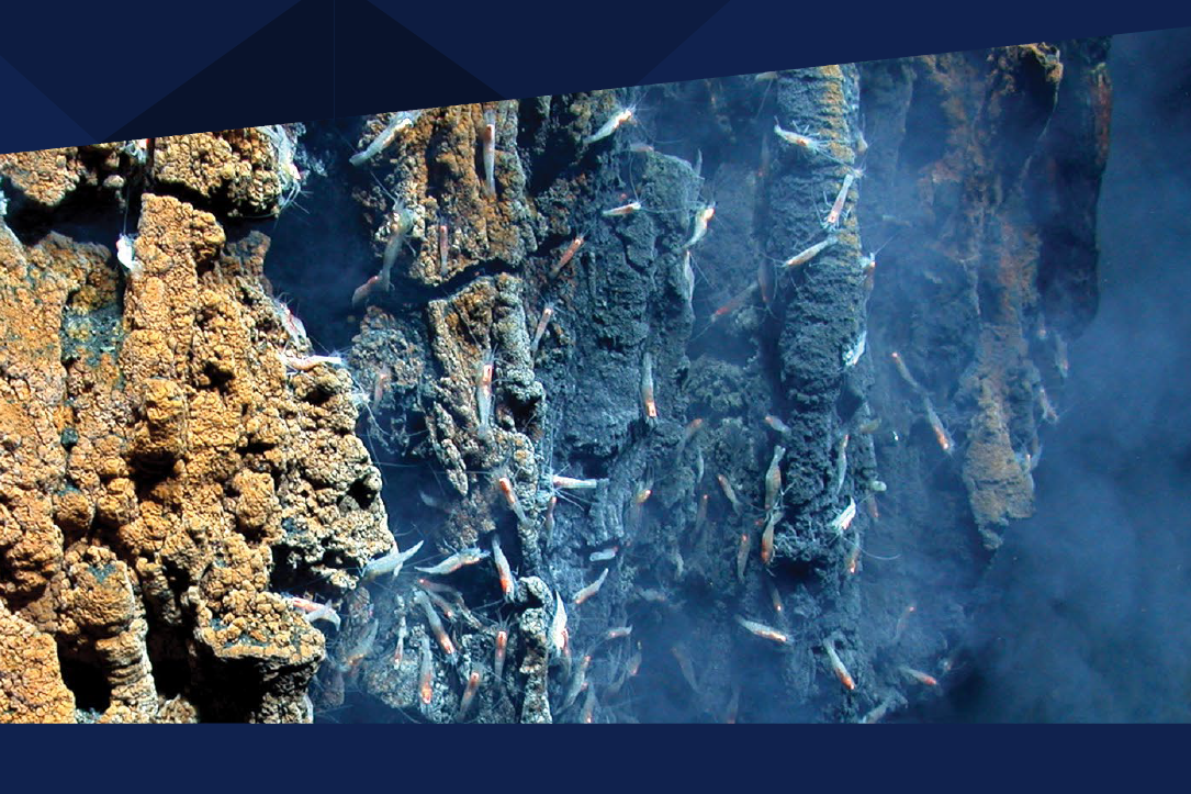 Overveldende interesse for havbunnsmineraler